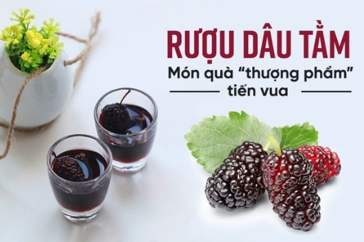 cong-thuc-ngam-ruou-dau-tam-ngon-dung-chuan