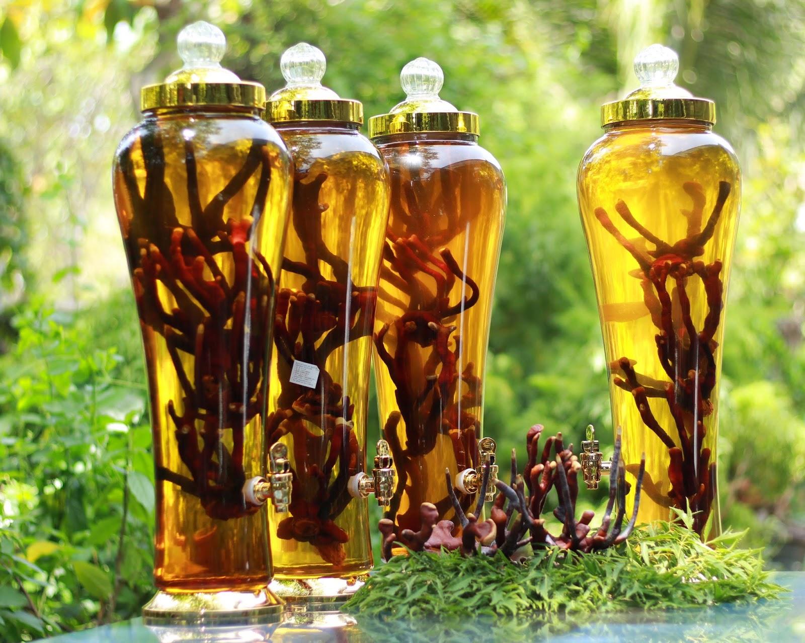 4 Cách ngâm rượu thảo dược tốt cho sức khỏe