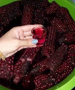 ngâm rượu ngô tím