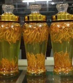 ngâm rượu đông trùng hạ thảo khô