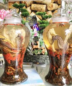 Bạn có thể mua cá ngựa ngâm rượu xịn tại Ngâm rượu Tây Bắc